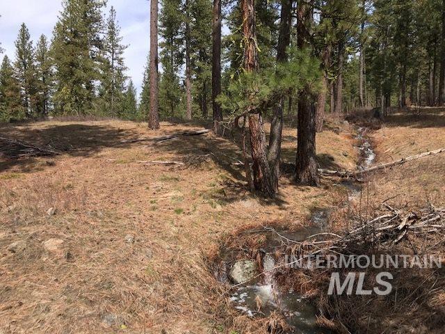 13322 Vili Lane, Mccall, ID 83638 (MLS #98730764) :: Boise River Realty