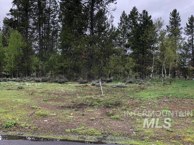 206 Morgan Drive, Mccall, ID 83638 (MLS #98730847) :: Idahome and Land