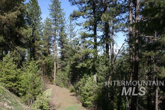 Lot 72 Eagle Ridge, Garden Valley, ID 83622 (MLS #98731614) :: Alves Family Realty