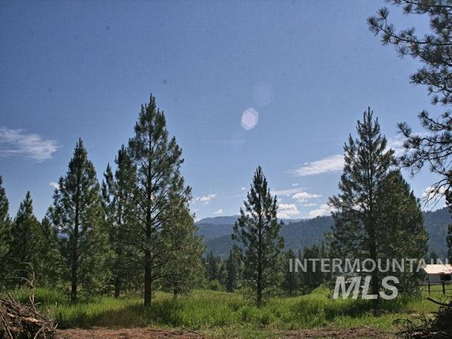160 Scriver Woods, Garden Valley, ID 83622 (MLS #98734003) :: New View Team