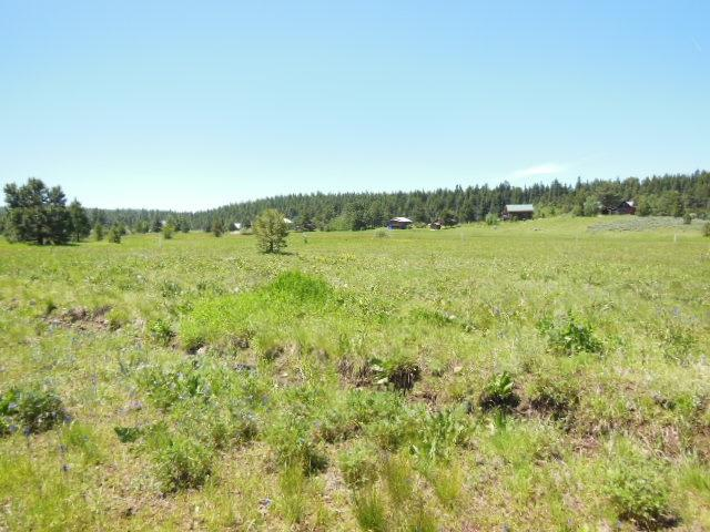Lot 2 Whitefield, Mccall, ID 83638 (MLS #98736714) :: New View Team