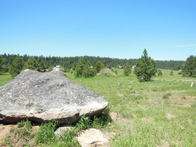 Lot 3 Whitefield, Mccall, ID 83638 (MLS #98736716) :: New View Team