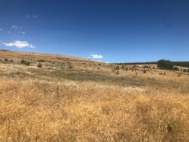 20216 Silver Spur Dr, Wilder, ID 83676 (MLS #98737913) :: Full Sail Real Estate