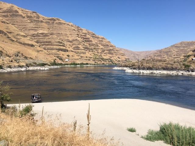 Parcel #3 Snake River Road, Asotin, WA 99401 (MLS #98739957) :: New View Team