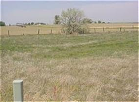 Lot 10 Blk 2  Eagle Crest Sub #2, Filer, ID 83328 (MLS #98740055) :: Alves Family Realty
