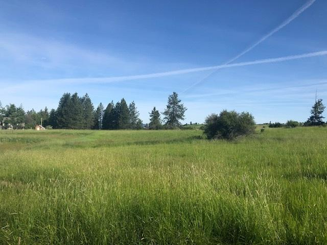 Lot 1 Touch Of Country Estates, Kooskia, ID 83539 (MLS #98741002) :: Boise River Realty
