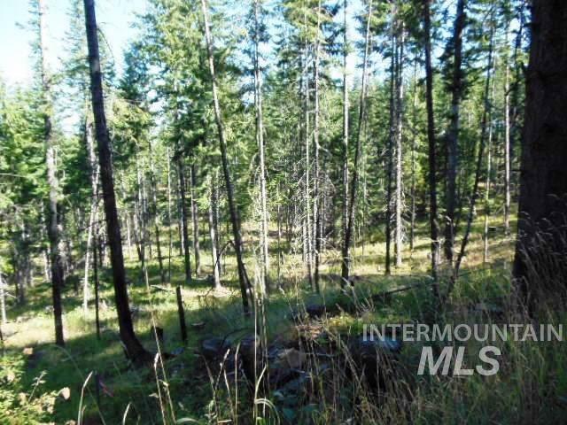 Johnston's Mill Road, Orofino, ID 83544 (MLS #98744132) :: Boise River Realty
