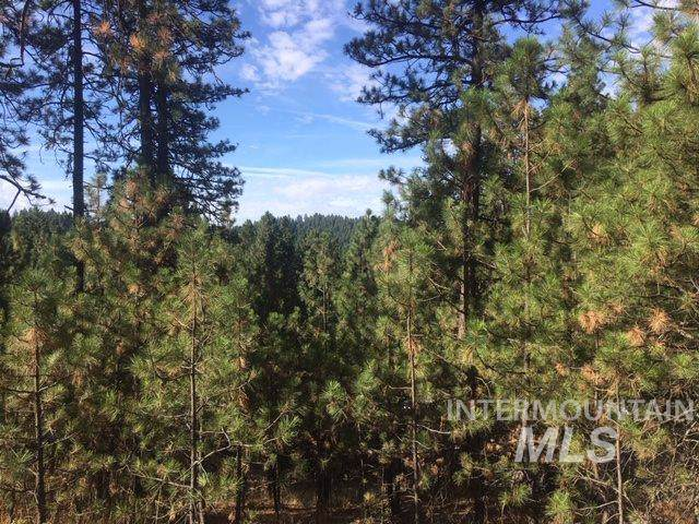 4674 Hwy 95 N, Moscow, ID 83843 (MLS #98744312) :: Juniper Realty Group