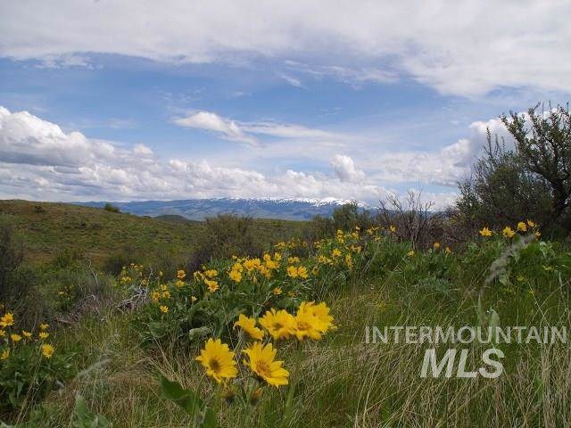 TBD Cuddy View Drive, Council, ID 83612 (MLS #98744899) :: Jon Gosche Real Estate, LLC