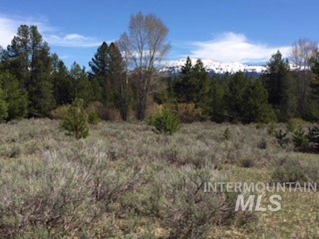 13770 Horizon View Rd, Mccall, ID 83638 (MLS #98747550) :: Boise River Realty