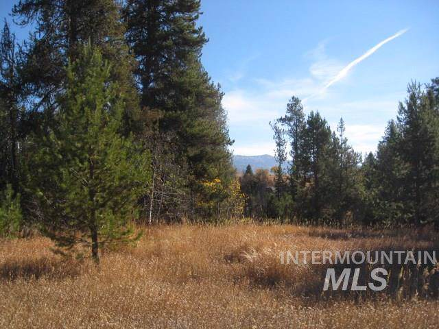14174 Jefferson, Mccall, ID 83638 (MLS #98748797) :: Givens Group Real Estate