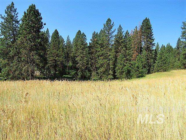 Lot 33 Scriver Woods, Garden Valley, ID 83622 (MLS #98750188) :: Juniper Realty Group