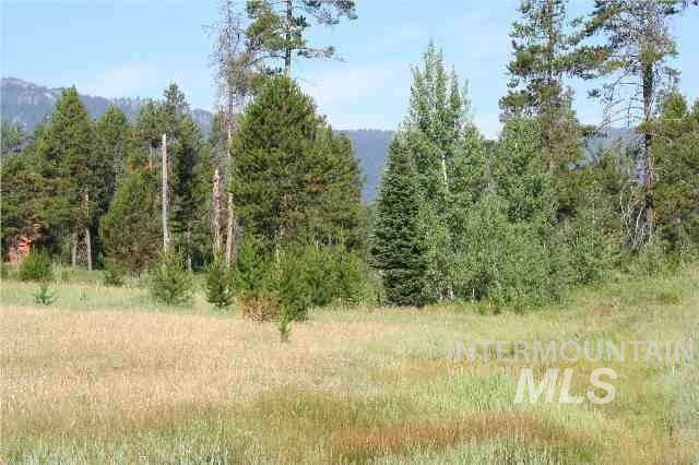 298 Eagle Lane, Donnelly, ID 83615 (MLS #98750646) :: New View Team