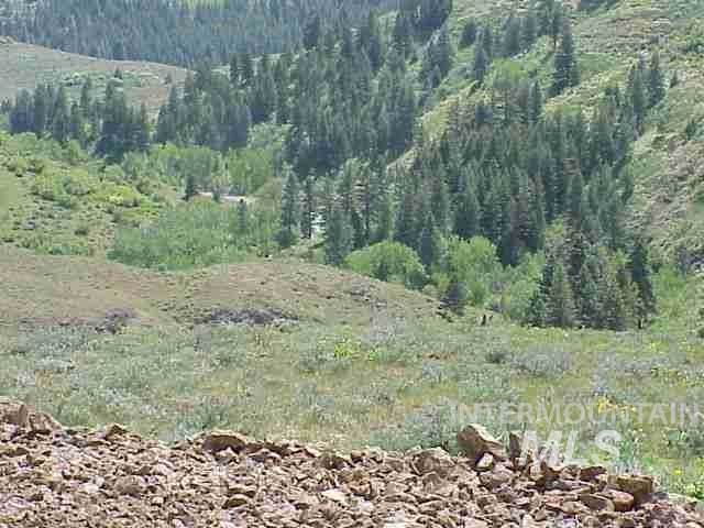Lot 1 Middle Fork Rd, Council, ID 83612 (MLS #98753576) :: Boise River Realty