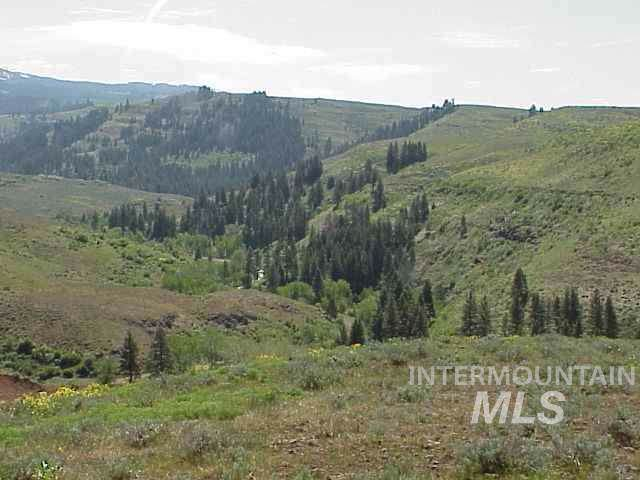 Lot 5 Middle Fork Rd, Council, ID 83612 (MLS #98753577) :: Boise River Realty