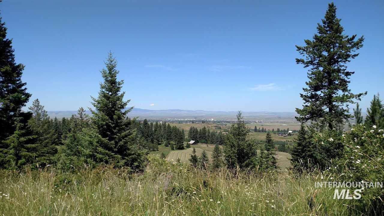 Lot 5 Elk Ridge Lane - Photo 1