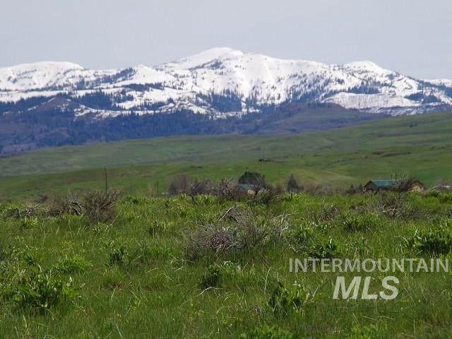 TBD N Grays Creek Road, Indian Valley, ID 83632 (MLS #98761551) :: Boise River Realty