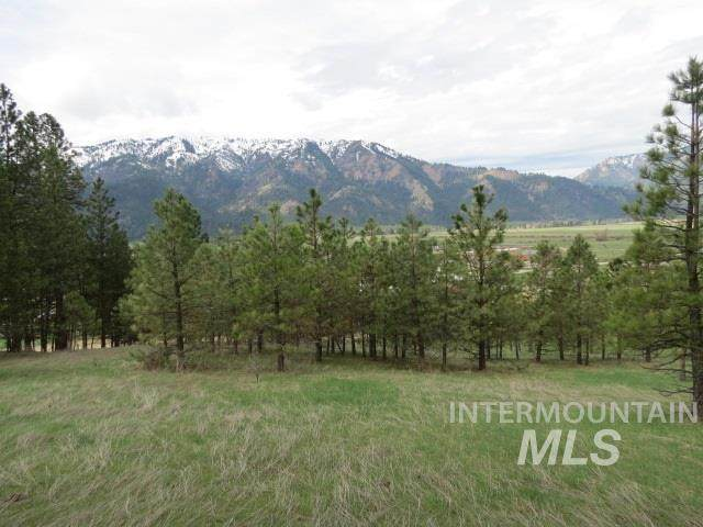 Lots 14 & 15 Mountain Vista Dr., Garden Valley, ID 83622 (MLS #98762765) :: New View Team