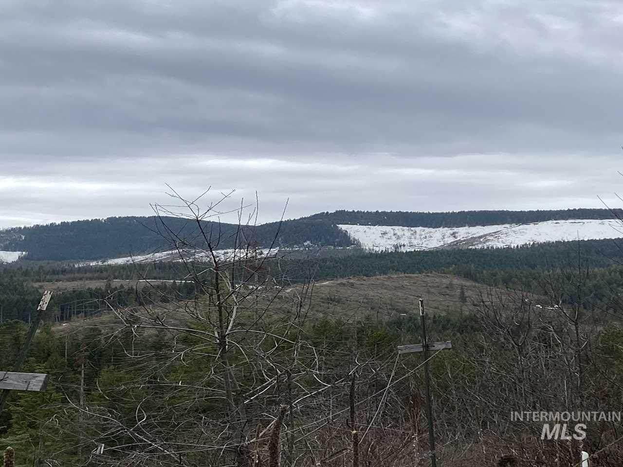 500 Moose Mountain Lane - Photo 1