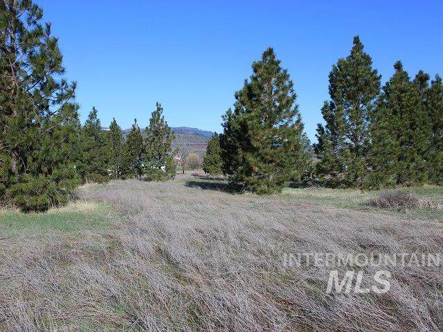 TBD Valley View Drive, Council, ID 83612 (MLS #98764479) :: New View Team