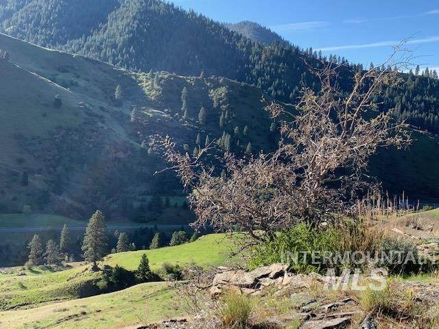 000 Diamond Springs Rd, Riggins, ID 83547 (MLS #98767678) :: Michael Ryan Real Estate