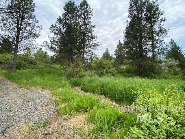 TBD Driscoll Ridge Road, Troy, ID 83871 (MLS #98768719) :: Story Real Estate