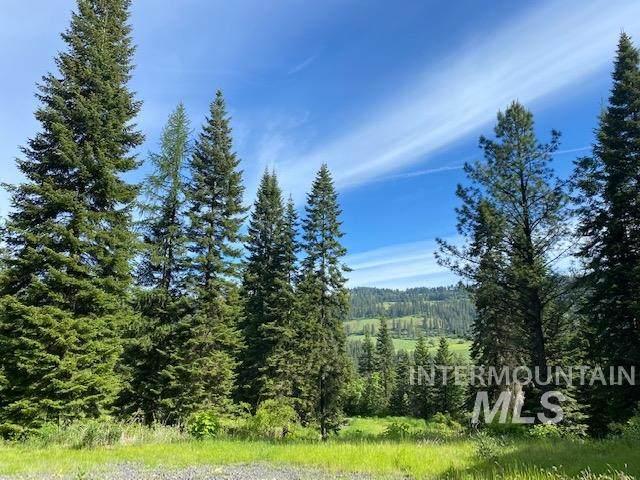 2112 Cascade Road, Orofino, ID 83544 (MLS #98768991) :: New View Team