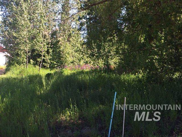 141 State St, Donnelly, ID 83615 (MLS #98769754) :: City of Trees Real Estate