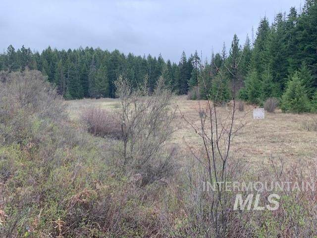 Lot 17 Shenandoah Acres, Kamiah, ID 83536 (MLS #98769788) :: Team One Group Real Estate