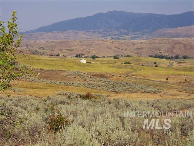 TBD Cuddy View Drive, Council, ID 83612 (MLS #98778256) :: Jon Gosche Real Estate, LLC