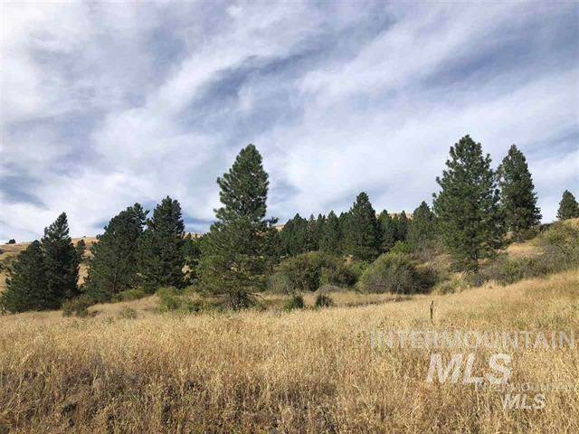 TBD Gold Wagon Drive Lot 5, Orofino, ID 83544 (MLS #98780070) :: Shannon Metcalf Realty