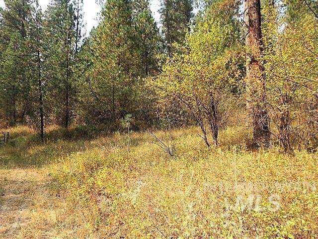 TBD Autumn Lane, Garden Valley, ID 83622 (MLS #98781255) :: Silvercreek Realty Group