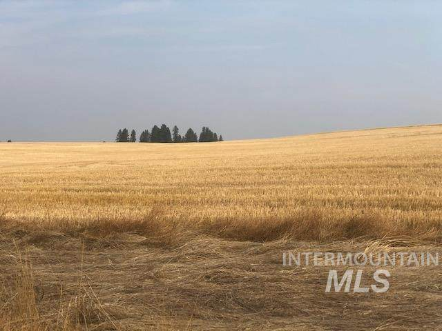 1654 Lukes Gulch Rd, Grangeville, ID 83530 (MLS #98781904) :: City of Trees Real Estate