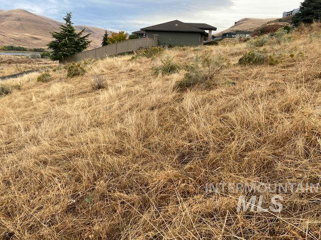107 Appleford Court, Asotin, WA 99402 (MLS #98783983) :: The Bean Team