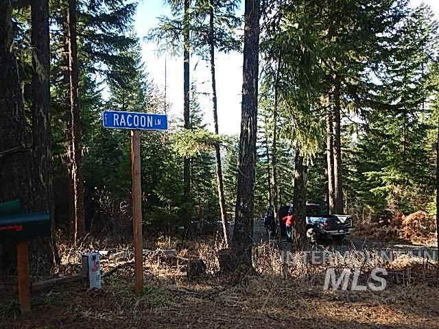 5 Raccoon Lane, Orofino, ID 83544 (MLS #98788756) :: Epic Realty