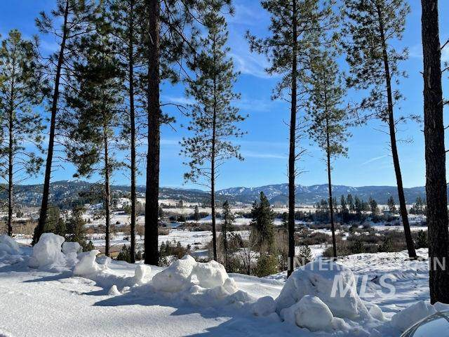Lot 2 Pine Grove, Garden Valley, ID 83622 (MLS #98789489) :: The Bean Team