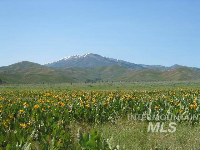 550 N Soldier Creek Road, Fairfield, ID 83327 (MLS #98792719) :: Juniper Realty Group