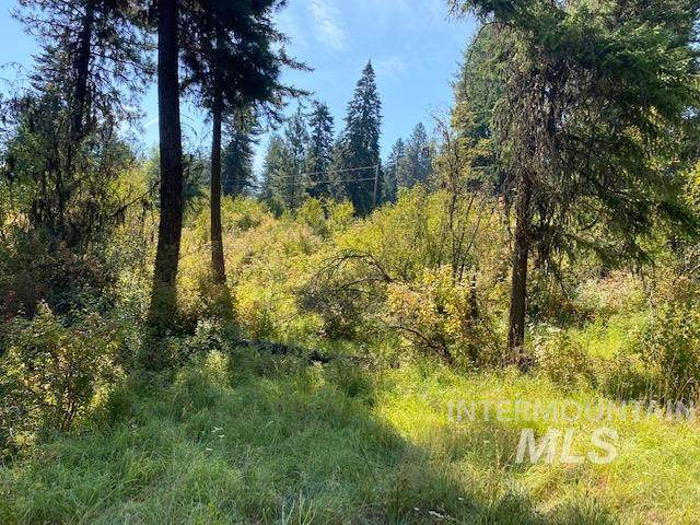 TBD Sun Mt Rd Parcel 4, Orofino, ID 83544 (MLS #98793620) :: Juniper Realty Group