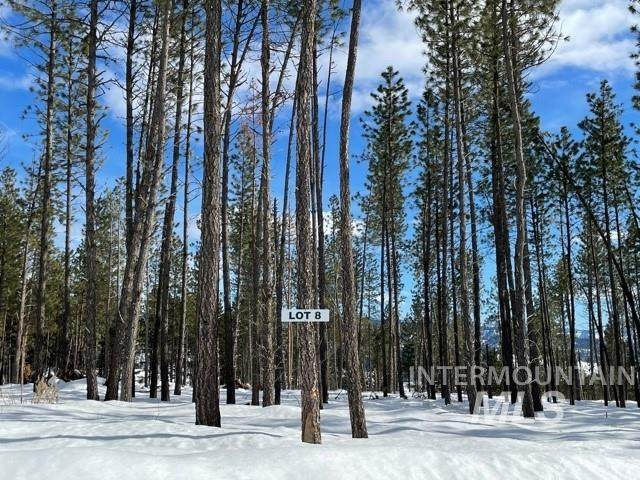 Lot 8 Pine Grove, Garden Valley, ID 83622 (MLS #98795001) :: Boise River Realty