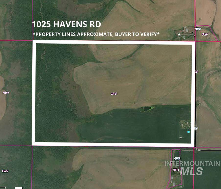 1025 Havens Rd - Photo 1