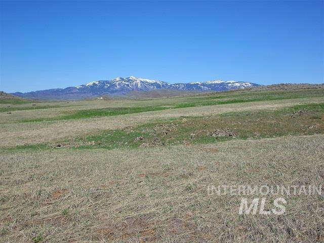 TBD Mill Road, Cambridge, ID 83610 (MLS #98798858) :: City of Trees Real Estate