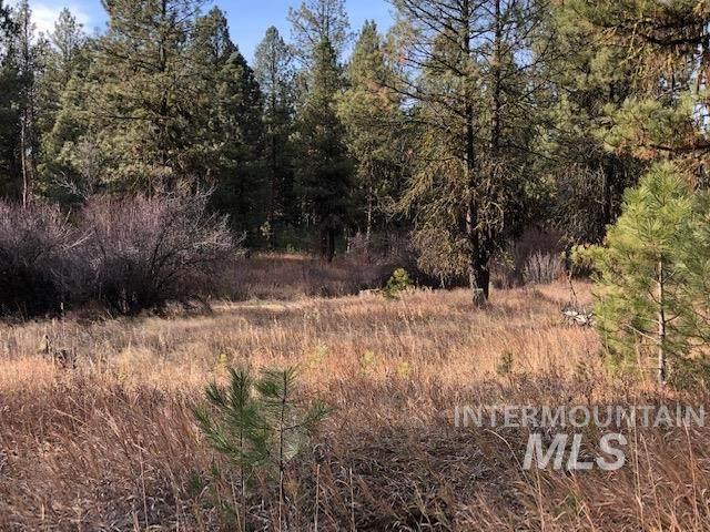 Lot 5 Timber Ridge Dr, New Meadows, ID 83654 (MLS #98799000) :: Build Idaho