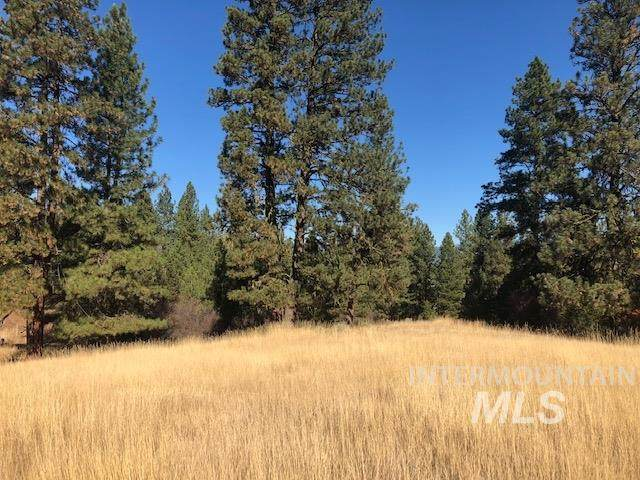 NNA Ruby Hills Ln, Garden Valley, ID 83622 (MLS #98799168) :: Team One Group Real Estate