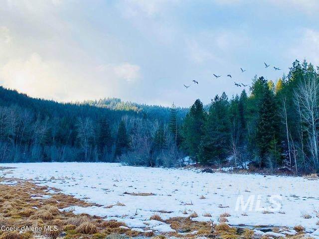 15433 N Rustic Ridge Trl, Rathdrum, ID 83858 (MLS #98800102) :: Shannon Metcalf Realty