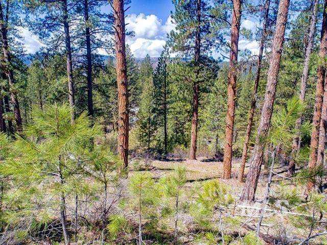 Lot 5 Meadow Lark Circle, Idaho City, ID 83631 (MLS #98801315) :: Adam Alexander