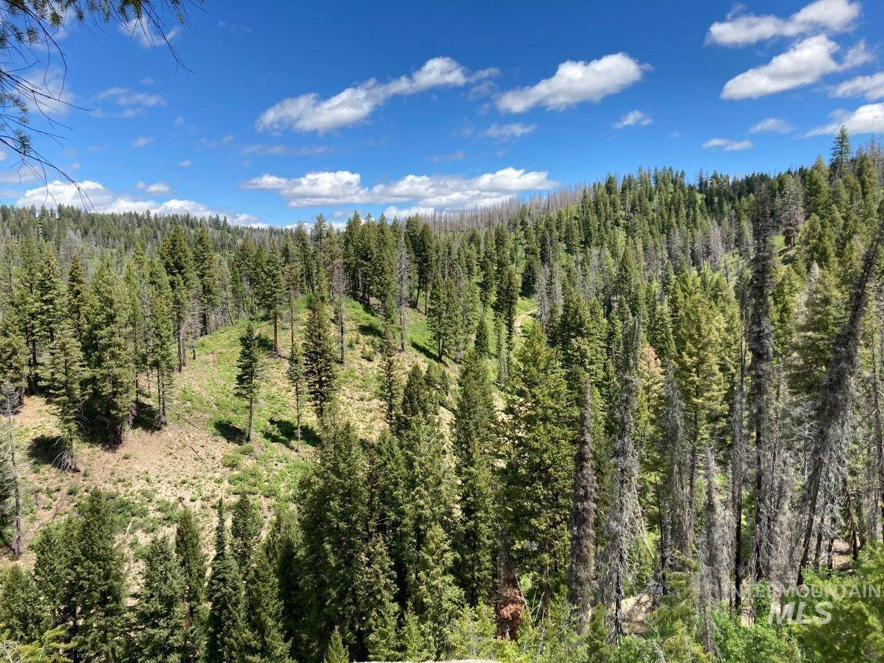 TBD Banner Creek Road - Photo 1