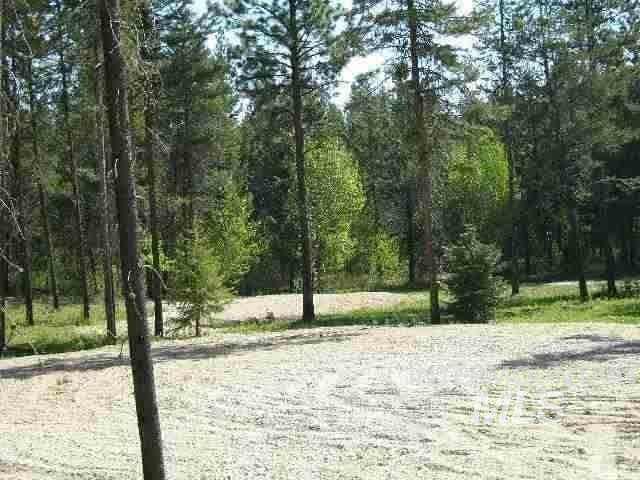 12928 Dawn Drive, Donnelly, ID 83615 (MLS #98816623) :: Full Sail Real Estate