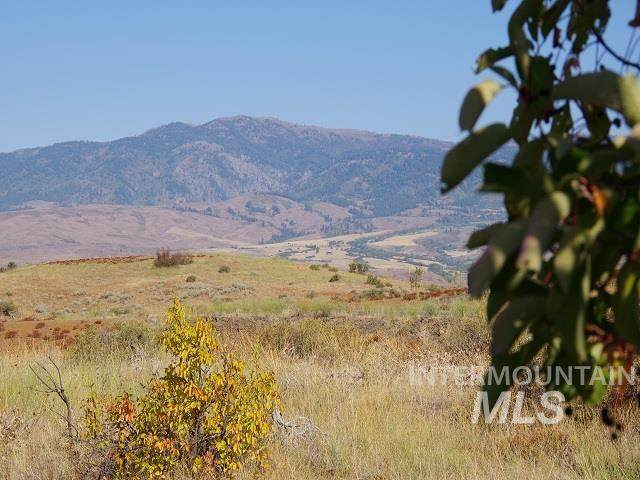 TBD Cuddy View Drive, Council, ID 83612 (MLS #98817975) :: Jeremy Orton Real Estate Group