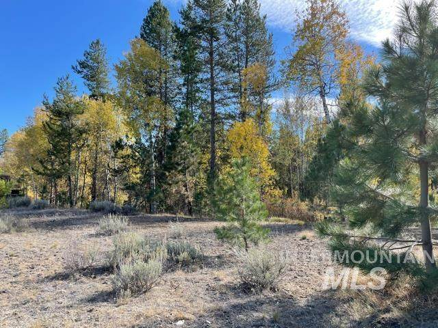 163 Morgan, Mccall, ID 83638 (MLS #98821375) :: Team One Group Real Estate