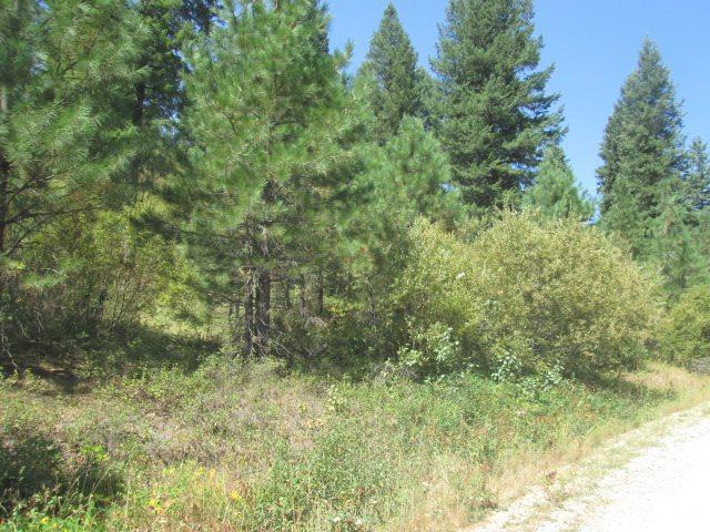 000 Bugle Lane, Boise, ID 83716 (MLS #98667346) :: Jon Gosche Real Estate, LLC